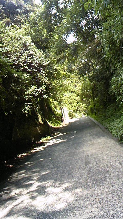 亀ケ谷坂 山ノ内ー扇ヶ谷を結ぶ切通